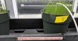 Lucent biosciences fertilizer solution to soil degradation